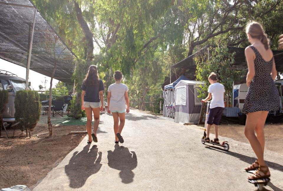 Instlaciones Camping Palm Mar